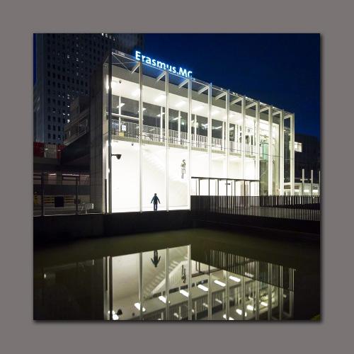 Museumpark-Paviljoen_Jeroen-Musch_CF067405-1-620x405